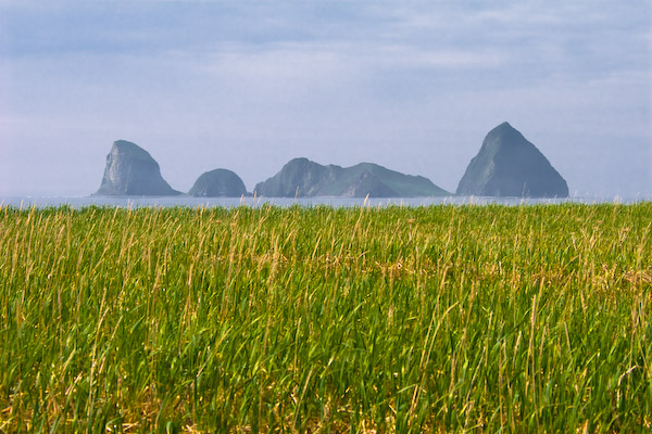 Остров Оташут. Камчатка
