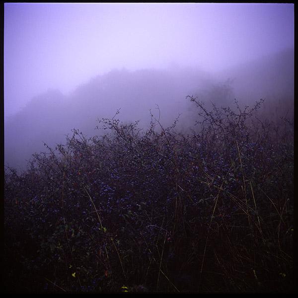 Гора Юца. Утро. 16-1.jpg
