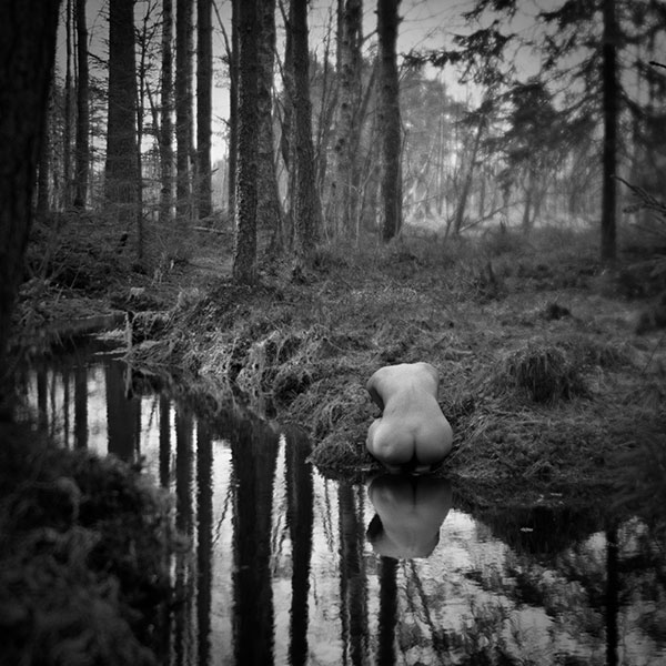 Tachihara 4x5 Валдай лес
