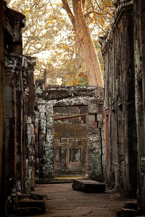 Камбоджа. Ангкор. Фото Николая Рыкова