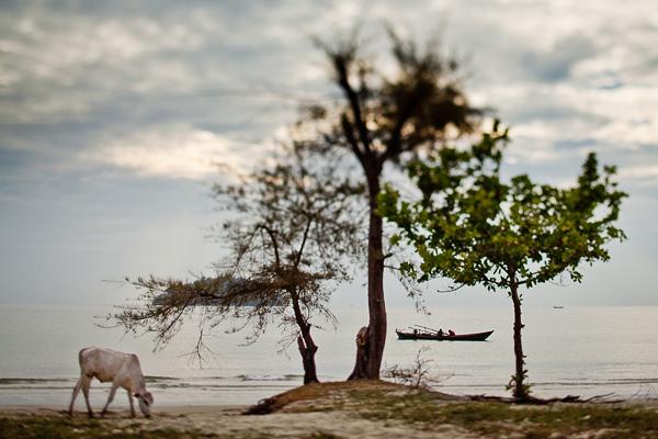 Фото съемка лавстори lovestory в Камбодже Cambodia. Фото Николая Рыкова